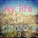 My life in photo's – april