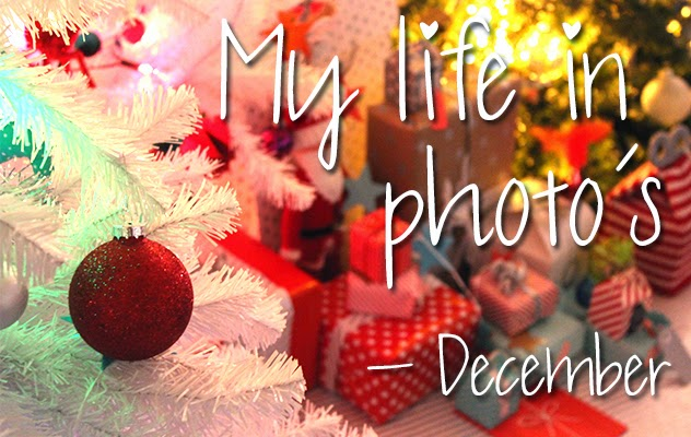 mylifeinphotos-december