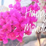 Happy Monday: YouTube & een nieuwe 30 days challenge